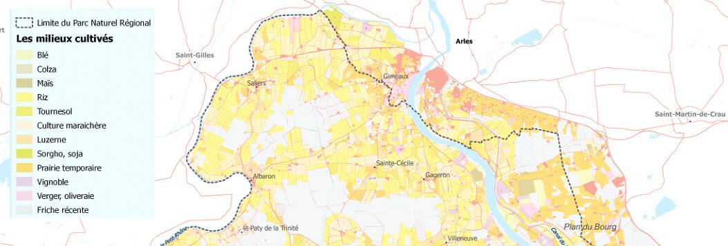 Analyse détaillée des pratiques agricoles, sur le PNR de Camargue